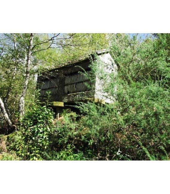 Casa para restaurar en pontevedra bora - Casas para restaurar en pontevedra ...