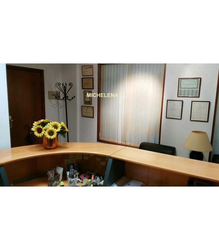 Alquiler oficina amueblada y decorada muy c ntrica en for Oficina consumo pontevedra